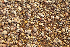 Color image of many small gray and brown rocks on dirt
