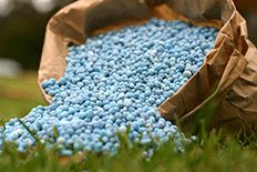 Color close up picture of blue pebble-like fertilizer in a brown bag pouring onto grass